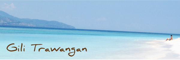 gili trawangan endangered Lombok Full Day Tour