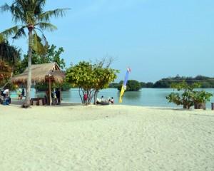 Pulau Pari - Tour Pantai Pasir Perawan