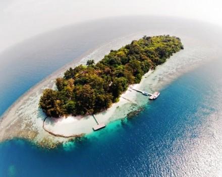 Endangered - Pulau Genteng Kecil 2