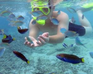 underwater spot2