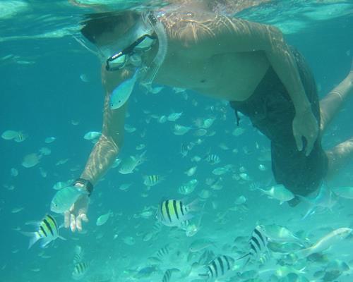 underwater-spot3