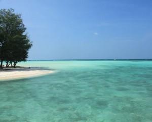 Karjaw-Pulau-Pasir-Putih