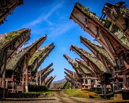 Amazing Toraja Culture Tour - Ke'te ke'su