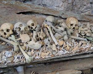 Tana-Toraja-Tour-Skull