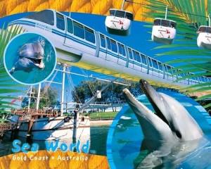 Australia-Gold-Coast-Tour-Sea-World