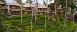 Bali-Kamandalu-Honeymoon-Villa-Ubud-Chalet-Overview