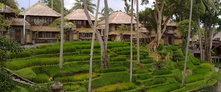 Bali Kamandalu Honeymoon Villa - Ubud Chalet Overview