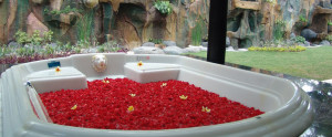 Bali Dreamland Honeymoon Villa - Bath Tub