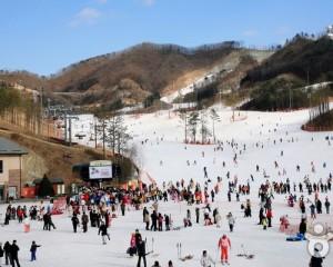 Korea-Seoul-City-Tour-Ski-Resort