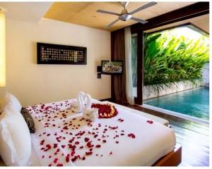 Bali-Maca-Seminyak-Honeymoon-Villa-The-Villa
