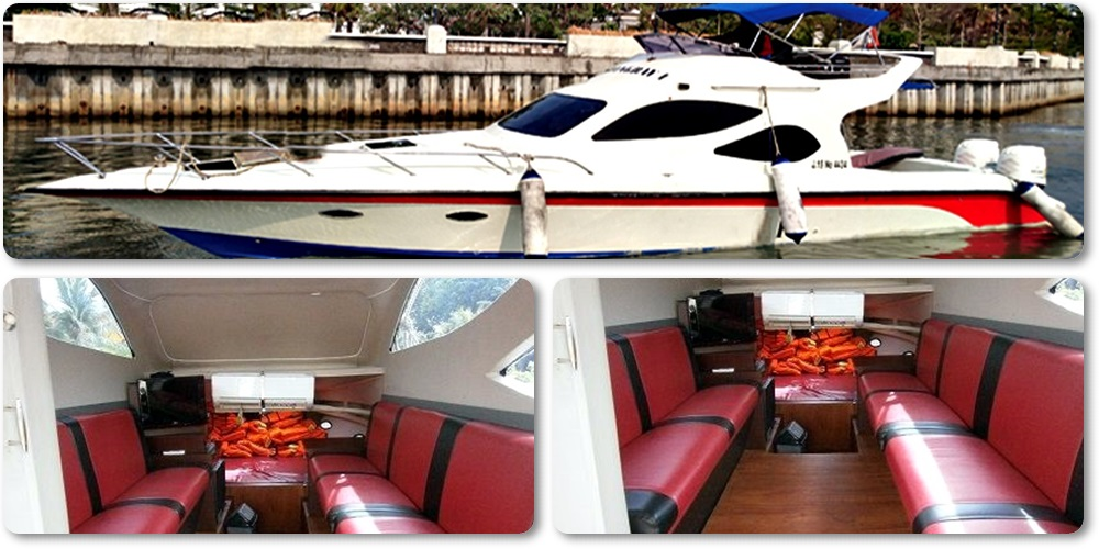 Sewa Kapal Speedboat Stingray