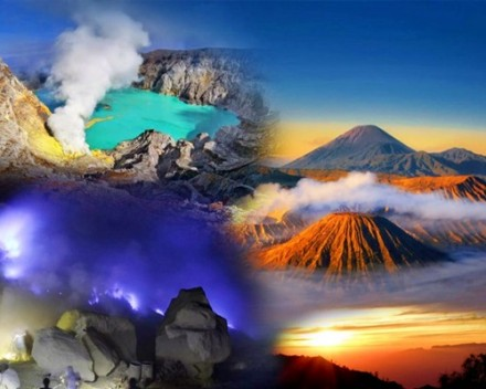 Endangered Indonesia - Tour Bromo Ijen