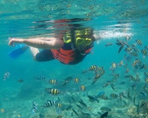 Royal-Island-Tour-Snorkeling