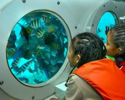 Bali Cruises - Kapal Selam Odyssey