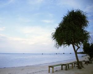 Pulau Pari - Pantai Perawan