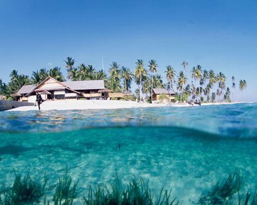 4d3n Dream Of Wakatobi Islands Tour Endangered Indonesia