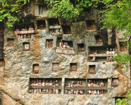 Amazing Toraja Culture Tour - Lemo