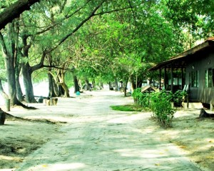 Pulau-Bira-Tour-Pemandangan-Pulau