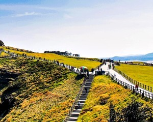 Korea-Jeju-Island-Tour-Seongsan-Sunrise-Peak