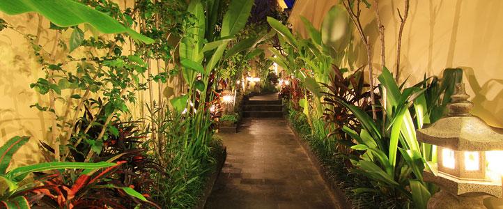 Bali Ardha Chandra Villa - Pathway Villa