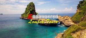 Endangered-Lombok-Tour-Banner