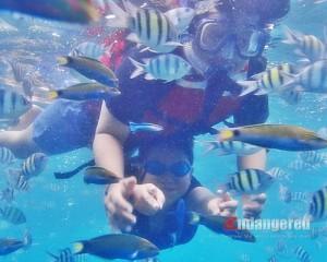 Amazing-Pulau-Seribu-One-Day-Tour-Snorkeling