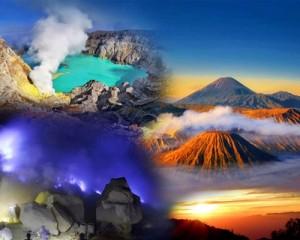 Endangered Indonesia - Tour Bromo Ijen