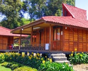 Rancabali-Tea-Resort-Rumah-Kayu