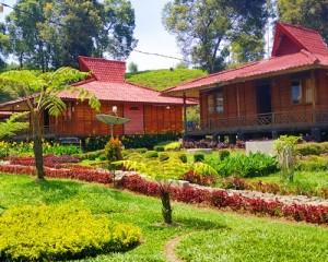Rancabali-Tea-Resort-Taman