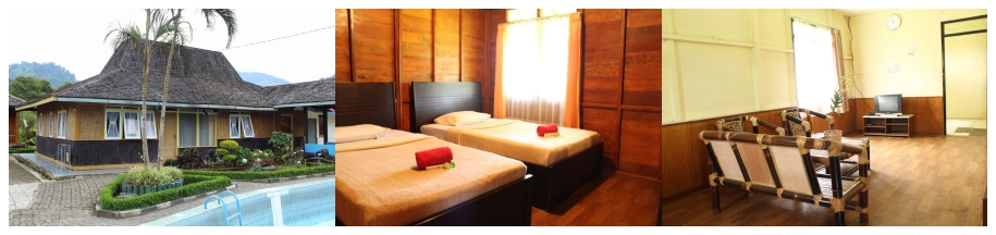 Villa Ciung Wanara Rancabali - Endangered Tour